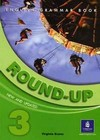 Round-Up 3. English Grammar Book